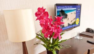 Hotel TV Solutions